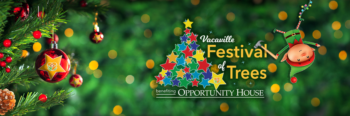 Vacaville Festival of Creating Magic