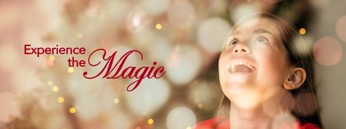 Vacaville Festival of Trees - Experience the Majc